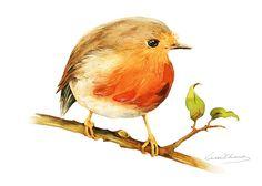 Pittura di Robin Bird  Robin Bird  5 da 7 stampa