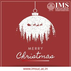 #christmas #merrychristmas #joy #peace celebration #santaclaus #happiness #occassion #imsghaziabad #qualityeducation #ecofriendlycampus #CEGRawarded #CIACawarded #bestprivatecollege #ranked3innorthernindia #winningstartshere Christmas Bulbs, Merry Christmas, University Courses, College Fun, Delhi Ncr, Personality, Celebration, Happiness, Joy
