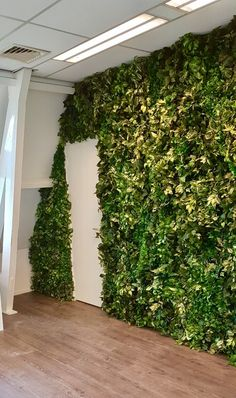 Greenwall with artificial plants Groene wand met kunstplanten