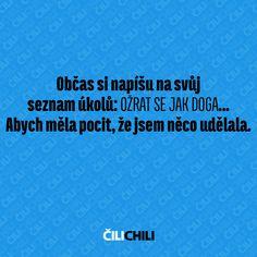Carpe Diem, Chili, Jokes, Humor, Funny, Chile, Husky Jokes, Humour, Memes