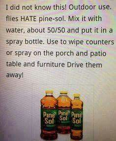 Pine sol and flies