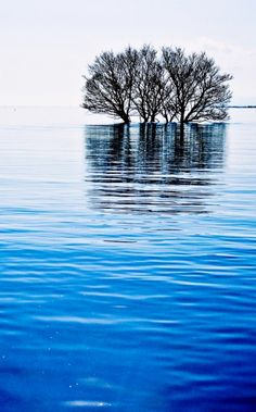 Lake Biwa, Japan 琵琶湖