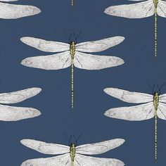 Shop for Wallpaper at Style Library: Demoiselle by Harlequin. An up-scaled delicately drawn dragonfly motif is placed. Downstairs Cloakroom, Downstairs Toilet, Harlequin Wallpaper, Wall Wallpaper, Cloakroom Wallpaper, Wallpaper Ideas, Wallpaper Feature Walls, Large Print Wallpaper, Wallpaper Toilet