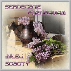 Greetings Images, Floral Wreath, Wreaths, Rose, Floral Crown, Pink, Door Wreaths, Deco Mesh Wreaths, Roses