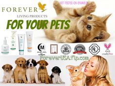 From animal to household products, the gentle formulas used within Forever's specialist range allow you to lovingly care for the things that matter. Forever's products use the purest form of aloe vera, essentially identical to the inner leaf gel, and are not tested on animals. This is a welcome sign for animal lovers everywhere. Discover the many benefits of aloe in a range of products perfect for your home and pets.