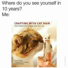 Funny Cat Memes, Really Funny Memes, Hilarious, Silly Cats, Cute Cats, Crazy Cat Lady, Crazy Cats, Crafting With Cat Hair, Cat Crafts