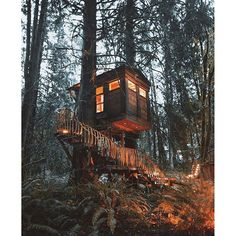 Cabin in the tree Cabins In The Woods, In The Tree, Interior Design Tips, Architecture, Land Scape, The Great Outdoors, Beautiful Places, Destinations, Adventure