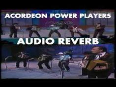 Acordeon Power Players Reverb(De2En2)