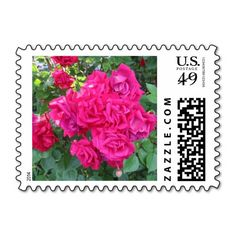 Old Fashioned Red Roses Postage