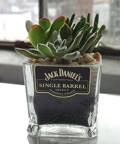 Gentleman Jack Whiskey Bottle Garden Succulent Holder by Rehabulous Put a plant into this base made from repurposed Jack Daniels bottle for some unique style. Plant not included W x H x D Glass Made in the USA Whiskey Bottle Crafts, Alcohol Bottle Crafts, Glass Bottle Crafts, Alcohol Bottles, Diy Bottle, Bottle Art, Recycled Glass Bottles, Beer Bottle, Vodka Bottle