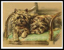 CAIRN TERRIER TWO DOGS ON A CHAIR LOVELY VINTAGE STYLE DOG PRINT POSTER