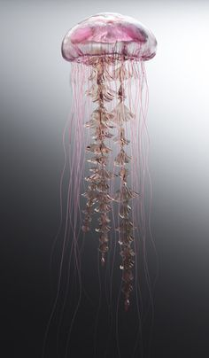 Steampunk Tendencies — Jellyfish Rise by James Gardner Jellyfish Facts, Jellyfish Tank, Jellyfish Drawing, Jellyfish Painting, Jellyfish Aquarium, Watercolor Jellyfish, Jellyfish Quotes, Jellyfish Tattoo, Tattoo Watercolor