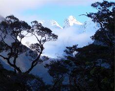 Cleft Creek, Hollyford valley, Fiordland | Flickr - Photo Sharing!