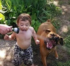 Funny & Cute Dogs and Kids Playing Everyday Together Videos Compilation Dogs And Kids, Animals For Kids, I Love Dogs, Funny Dogs, Funny Animals, Cute Animals, Baby Animals, Animal Pictures, Cute Pictures