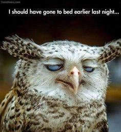 Yup, me too...