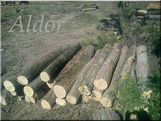 akác rönköt keres, +36 30 532 7489 Firewood, Pergola, Texture, Crafts, Surface Finish, Woodburning, Manualidades, Outdoor Pergola, Handmade Crafts
