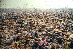 Land Pollution is a Growing Problem