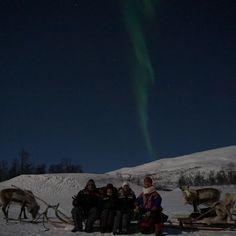 Reindeer Sledding and Northern Lights – Tromsø Lapland