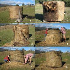 slow hay feeders for horses | SlowFeed Hay Saver Net - Natural Horse World