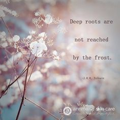 """""""Deep roots are not reached by the frost.""""  #Tolkein #quote #inspiration"""