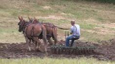 VIDEO. Brown Farm Pioneer Days. Courtesy: Rural Heritage. Cedar Rapids, IA (USA)