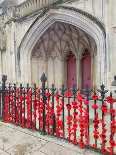 The knitted poppies leave a stunning reminder outside Winchester cathedral. Knitted Poppies, Winchester, Cathedral, The Outsiders, Dairy, Cottage, Leaves, Painting, Blue Skies