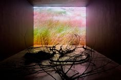 At Any Given Moment, Grass 2 With Burnt Wood, 2010 by Rebeca Mendez, GLOW artist in residence