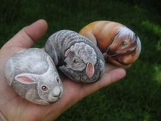 Image detail for -stone painting is a unique form of art where stones are painted with ...