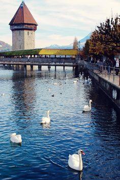 Lucerne, Switzerland #dreamsinhd