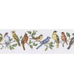 Bird Perch Wallpaper Border Multicolor