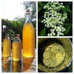 VLIERBLOESEMSIROOP Ingrediënten: - 25 schermen vlierbloesem -1,25 liter water -1 citroen (in dunne plakjes) - 750 gr suiker - 20 gr citroenzuur (optioneel). Bereiding: Pluk de bloesem in mei/juni aan het begin van de middag op een droge, zonnige dag. Knip de bloemetjes van de stelen (steeltjes zijn niet erg, maar zo min mogelijk). Bloesem en citroen in een pan. Water verwarmen tot het lauw is. Over bloesem gieten en mengsel 24 uur trekken. Zeef de bloesem met behulp van kaasdoek/theedoek… Yummy Drinks, Yummy Food, Elderberry Recipes, Juicy Juice, Non Alcoholic Drinks, Plant Based Recipes, Fruits And Veggies, Food To Make, Smoothies