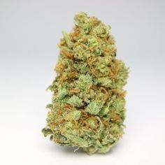 Weeds Strains Archives - Page 2 of 4 - Global Weed Shop Weed Shop, Buy Weed, Weed Drug, Bro, Weed Buds, Weed Types, Cannabis Seeds For Sale