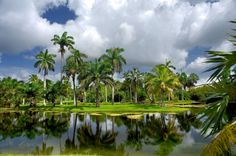 fairchild tropical gardens | Fairchild tropical gardens