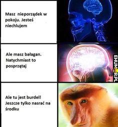 Tylko nasrać – eHumor.pl – Humor, Dowcipy,  Najlepsze Kawały, Zabawne zdjęcia, fotki, filmiki Best Memes, Funny Memes, You Need Jesus, Mood Wallpaper, Just Smile, Lol, Humor, Polish, Best Memes Ever
