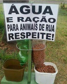 Eu apoio #cachorros 😍😍