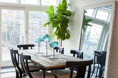 les 25 meilleures id es de la cat gorie figuier lyre sur pinterest feuille violon fig plantes. Black Bedroom Furniture Sets. Home Design Ideas