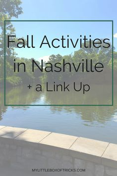 Fall Activities in N