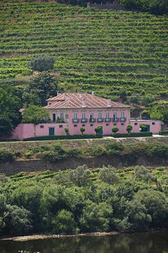 Casa dos Varais, overlooking the Douro Valley, Portugal...