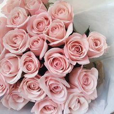 Bouquet Of Light Pink Roses My Flower, Pretty Flowers, Pretty In Pink, Light Pink Flowers, Light Pink Rose, Flower Ideas, Tout Rose, Color Rosa, Beautiful Roses