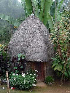Typical hut of a Dorze village in Gughe Mountains, Ethiopia (by MikeTnT).