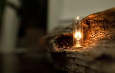 fLume: discarded Christmas trees transformed into rustic lamps