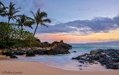 Makena Cove, Maui, Hawaii. | da pedro lastra