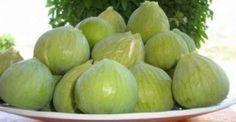 Τα απίστευτα οφέλη του σύκου: Η απόλυτη υπερτροφή του καλοκαιριού - http://biologikaorganikaproionta.com/health/190208/