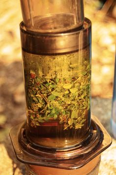 tea from thyme
