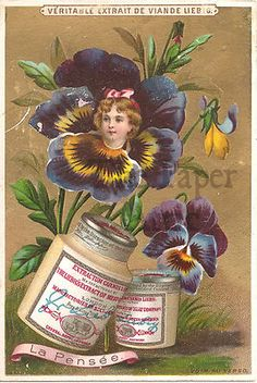 Pansy Flower Girl  Vintage Victorian French Liebig Trade Card |