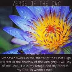 "Verse of the day:  ‭Psalm‬ ‭91‬:‭1-2‬ NIV ""Whoever dwells in the shelter of the Most High will rest in the shadow of the Almighty. I will say of the Lord, ""He is my refuge and my fortress, my God, in whom I trust.""""  See it at Bible.com:  http://bible.com/111/psa.91.1-2.niv  #verseoftheday"