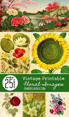 25 Free Printable Vintage Floral Images -- just like I've been looking for, plus cute ideas for using them to decorate, too!
