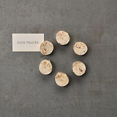 Driftwood Magnet - Set of 6
