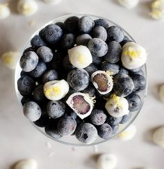 Dip blueberries in y