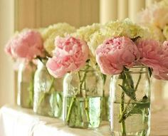 Bold and Beautiful Peonies | What About